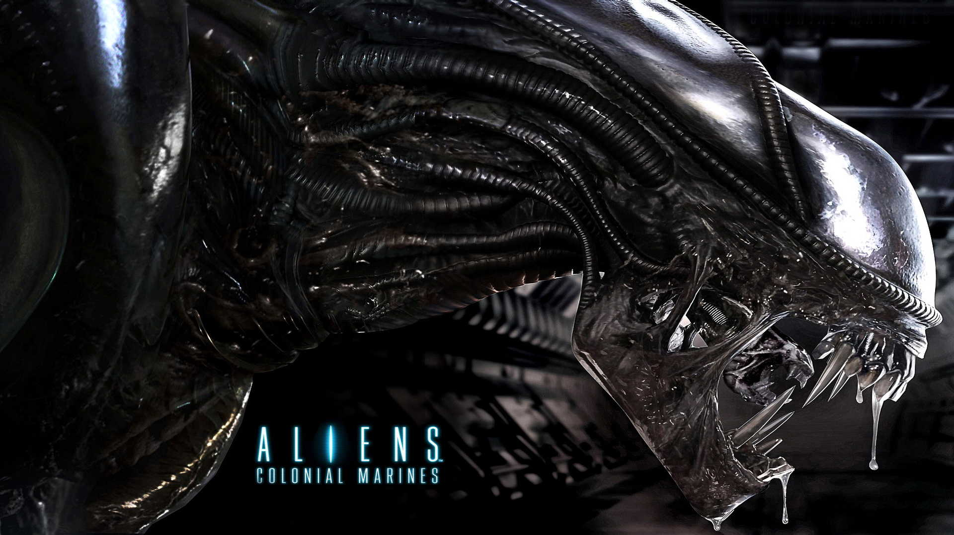 Wallpapers Fond D Ecran Pour Aliens Colonial Marines Pc