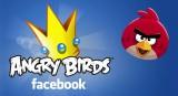 jaquette Navigateur Angry Birds