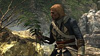 Assassins Creed 4 Black Flag 17