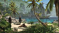 Assassins Creed 4 Black Flag 22
