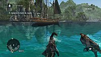 Assassins Creed 4 Black Flag 10