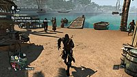 Assassins Creed 4 Black Flag 135
