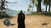 Assassins Creed 4 Black Flag 246