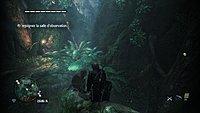 Assassins Creed 4 Black Flag 264