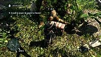 Assassins Creed 4 Black Flag 6