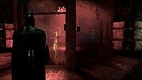 Batman Arkham Asylum screenshot 25