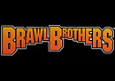 jaquette Wii Brawl Brothers