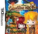 jaquette Nintendo DS Caveman Rock