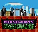 jaquette Nintendo 3DS Crash n The Boys Street Challenge