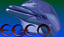 jaquette Wii Ecco The Dolphin