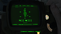 Fallout 4 12