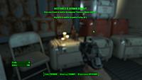 Fallout 4 19