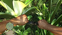 Far cry 3 PC debut 13
