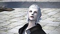 Final fantasy XIV a realm reborn debut 26