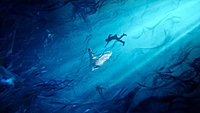 Final Fantasy XV Noctis et Lunafreya Nox Fleuret wallpaper 1