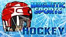Magnetic Sports Hockey