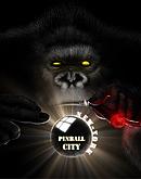 Pinball City New York