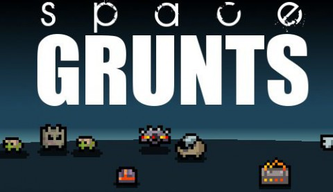 jaquette PC Space Grunts