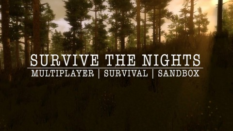jaquette PC Survive The Nights