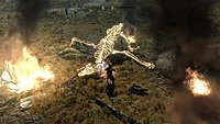 The Elder Scrolls V Skyrim 56