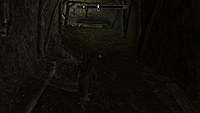 The Elder Scrolls V Skyrim screenshots 1