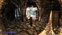 The Elder Scrolls V Skyrim screenshots 4