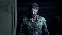 The Last of Us image 3