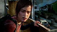 The Last of Us image 49