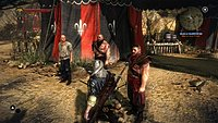 The Witcher 2 Assassins of Kings debut 8