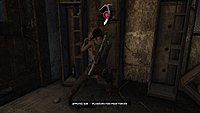 Tomb Raider 112