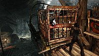 Tomb Raider 13
