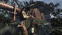 Tomb Raider 131