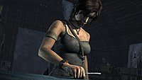 Tomb Raider 132