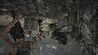 Tomb Raider 134
