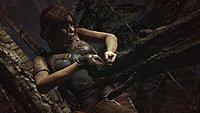 Tomb Raider 167