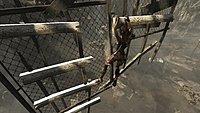Tomb Raider 181