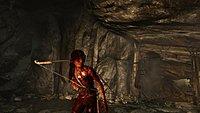 Tomb Raider 187