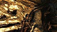 Tomb Raider 194