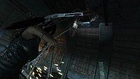 Tomb Raider 231