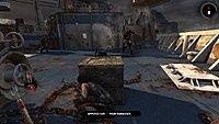 Tomb Raider 239