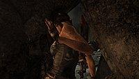 Tomb Raider 260