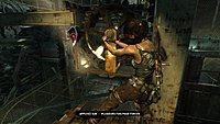 Tomb Raider 262