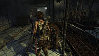 Tomb Raider 265