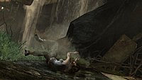 Tomb Raider 29