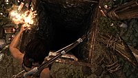Tomb Raider 42