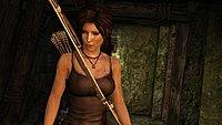 Tomb Raider 43