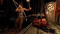 Tomb Raider 47