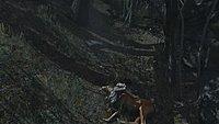 Tomb Raider 52