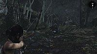 Tomb Raider 53