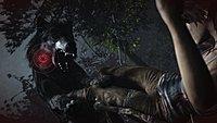 Tomb Raider 54